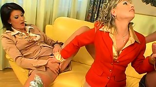 Dressed females using toys in special oral sex hardcore xxx