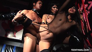 A very raunchy BDSM threesome with brunette Tha