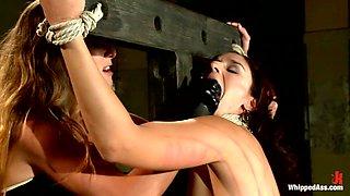Hottest fetish xxx movie with best pornstar Sheena Ryder from Whippedass